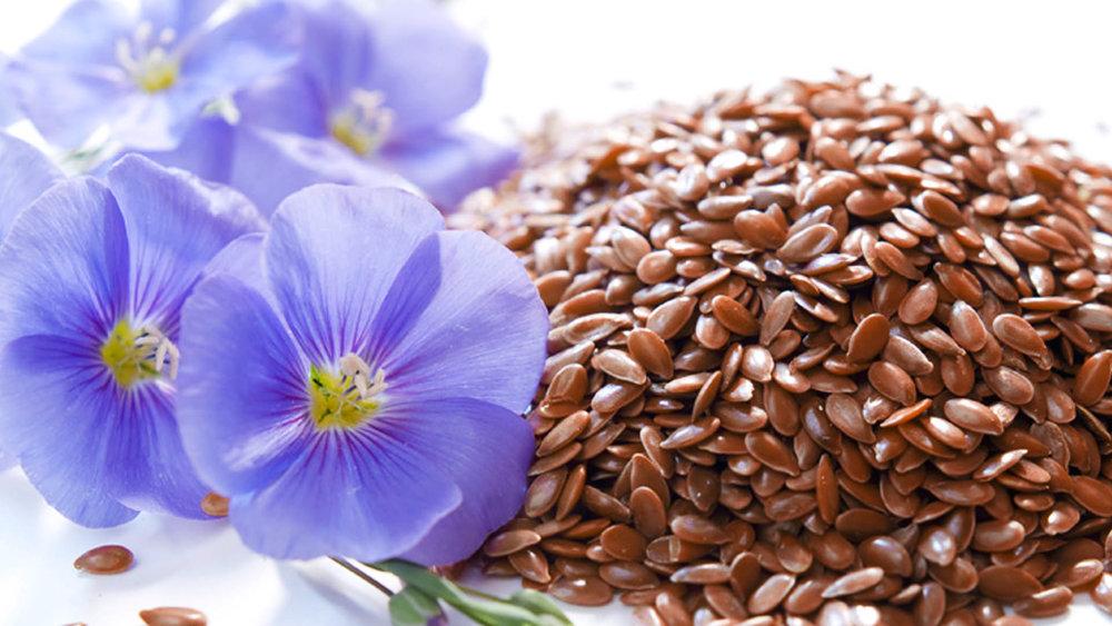 Как очистить семя льна в домашних условиях