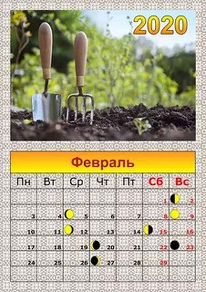 Благоприятные дни для квашения капусты в марте 2020 года по лунному календарю